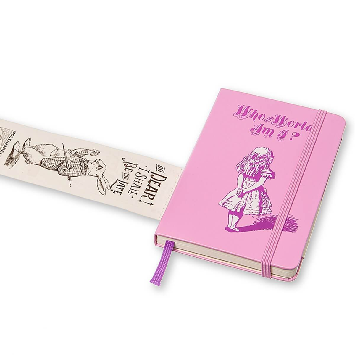 alice-in-wonderland-who-in-the-world-am-i-journal-